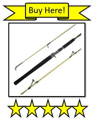 Buy Here KastKing WideEye Walleye Fishing Rod