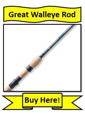 St. Croix Avid Walleye Fishing Rods